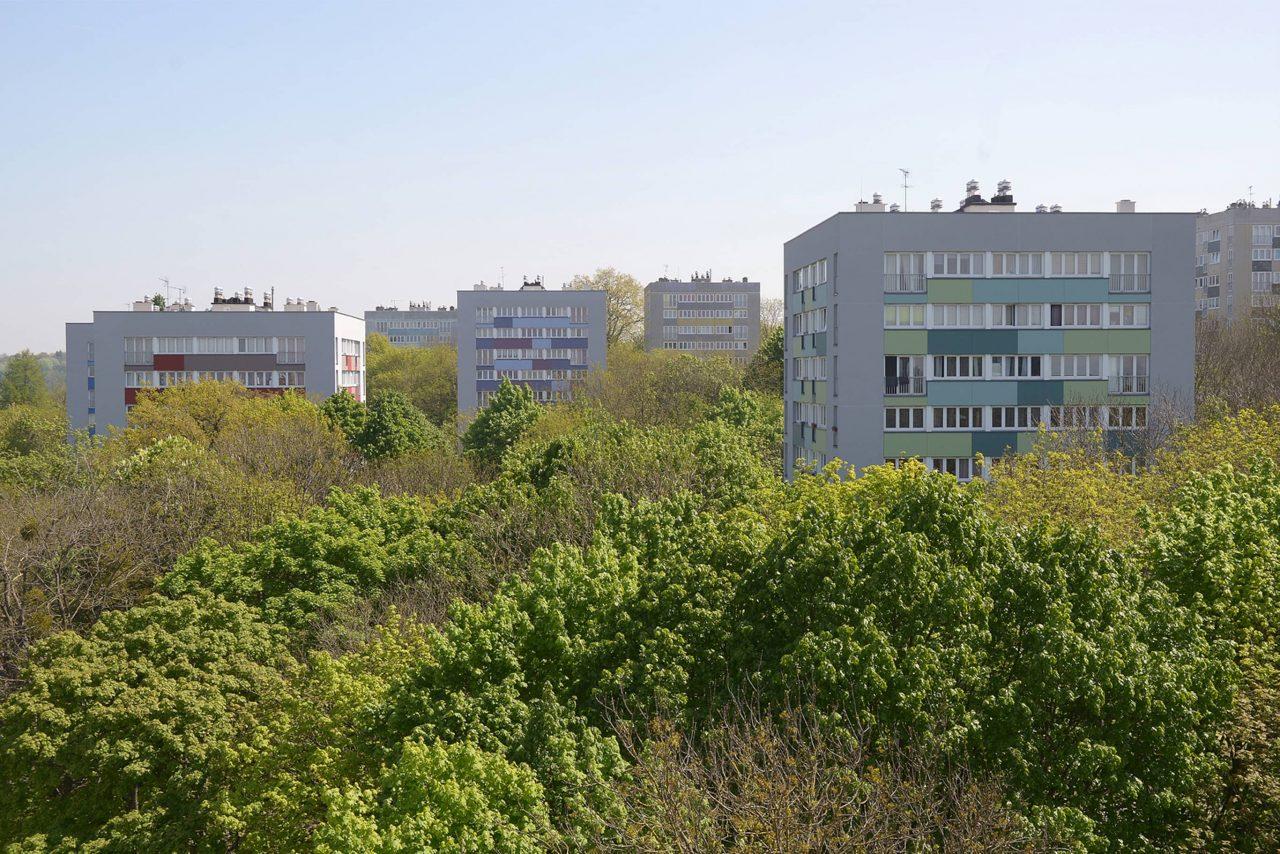 vue des tours de la vité verte parmis les arbres